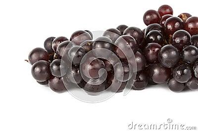 Wet grapes  on white