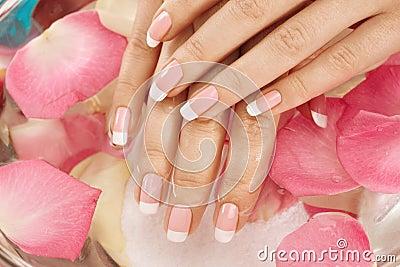 Wet hand and petals