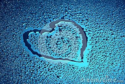 Wet heart