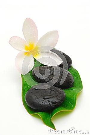 Wet massage stones