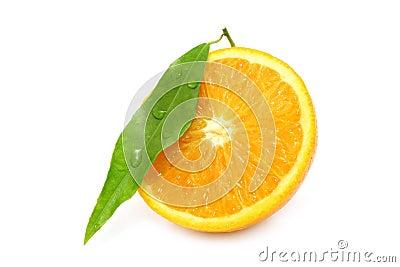 Wet orange segment
