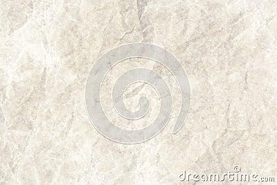 Wet paper