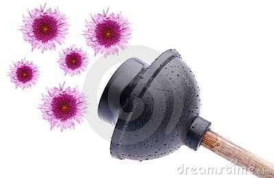 Wet Plunger with Flowers
