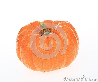 Wet Pumpkin