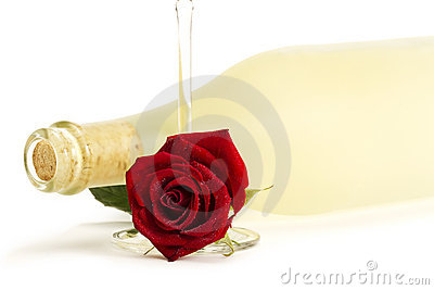 Wet red rose with a empty champagne glass in front