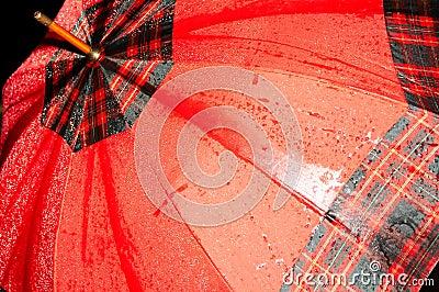 Wet red umbrella