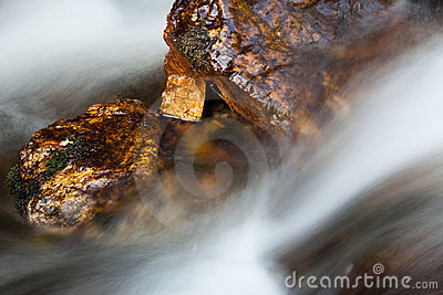 Wet rock in river