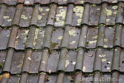 Wet roof tile background