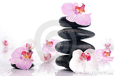 Wet spa stones with flowers