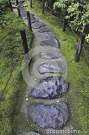 Wet stone pathway
