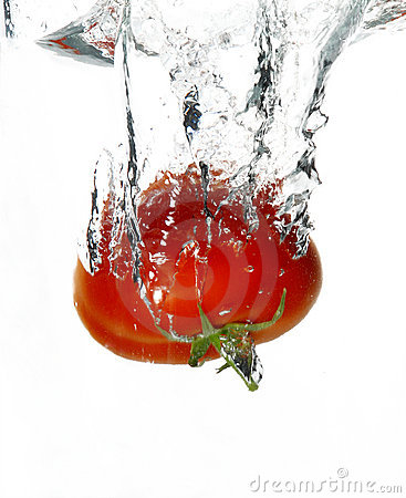 Free Wet Tomato Royalty Free Stock Image - 704926