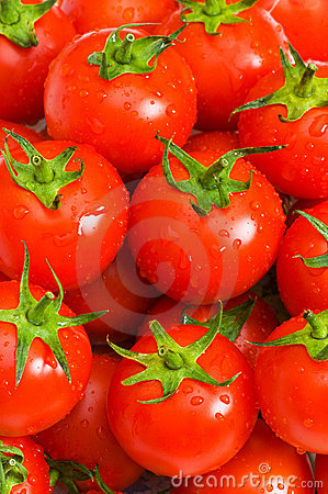 Wet whole tomatos