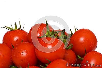 Wet whole tomatos isolated