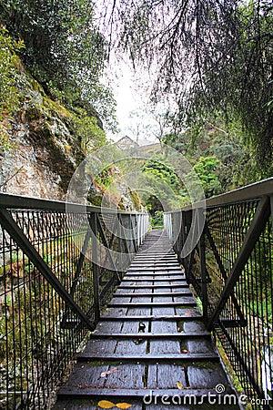 Wet wooden footbridge crossing gorge