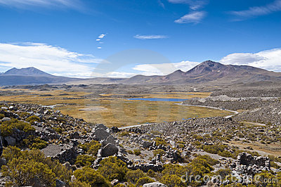 Wetland in Parinacota, Chile
