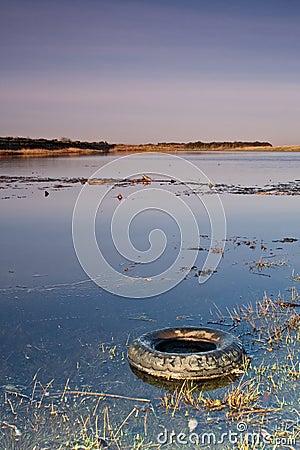 Wetland Tyre