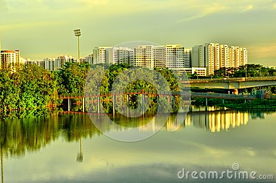 Wetland in Urban City Singapore