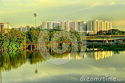 Wetland in Urban City Singapore