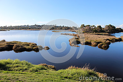 Wetlands at Big Swamp Bunbury Western Australia in late winter.
