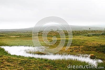 Wetlands and misty hills