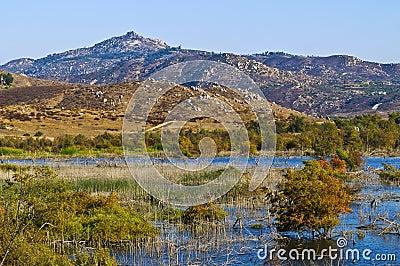 Wetlands, San Diego County, California