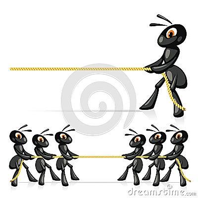 Wettbewerb mit Seil