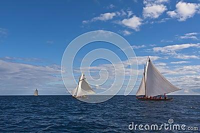 Whaling boat regatta race