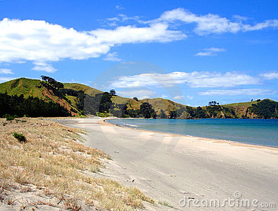 Whangapoua Beach, New Zealand