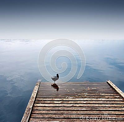 Free Wharf Stock Photography - 5937202