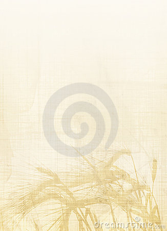 Free Wheat Backround Stock Images - 3573024