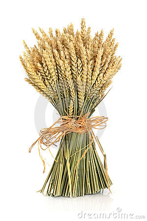 Free Wheat Bundle Royalty Free Stock Photo - 21746545