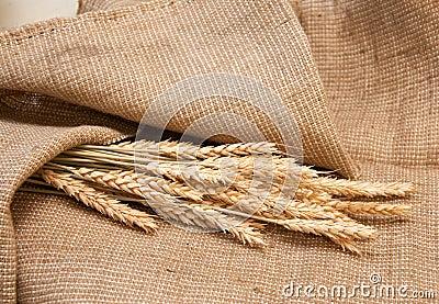 Wheat on a burlap