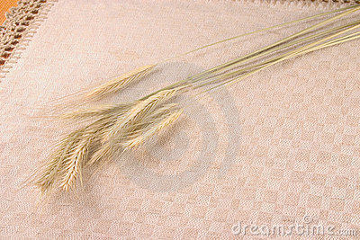 Wheat crops over linen tablecloth