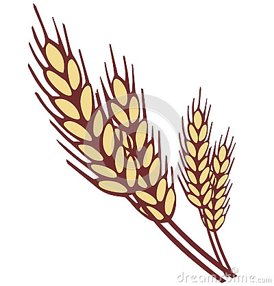Free Wheat Ear Royalty Free Stock Images - 34459499
