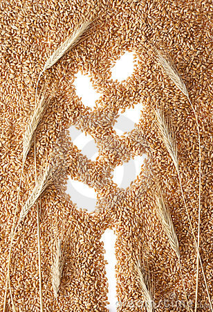 Wheat ear symbol