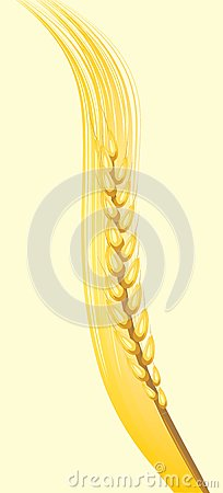 Wheat ear on the yellow background