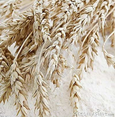Wheat ears on the flour