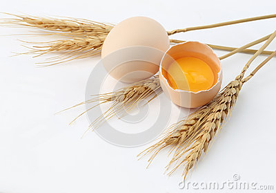 Wheat, Egg with yolk