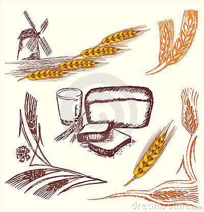 Wheat elements