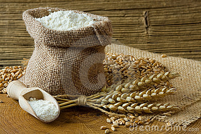 Wheat grain and flour