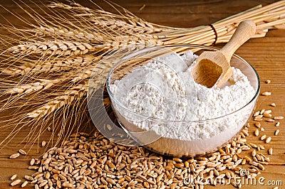 Wheat, grain and flour