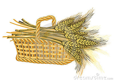Wheat harvest in basket