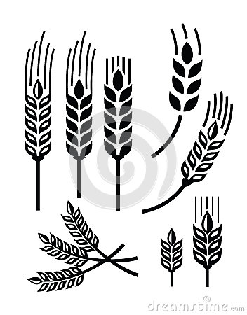 Free Wheat Icon Royalty Free Stock Photography - 46457157