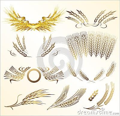 Free Wheat Mix Stock Photos - 6062663