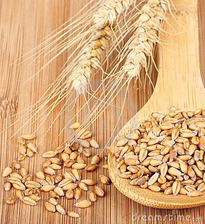 Wheat and Wheat Kernels