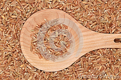 Wheat on a wooden spoon