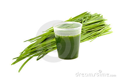 Wheatgrass drink isolated on white background
