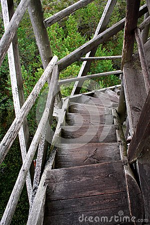 Wheathered wood stairs leading till the ground
