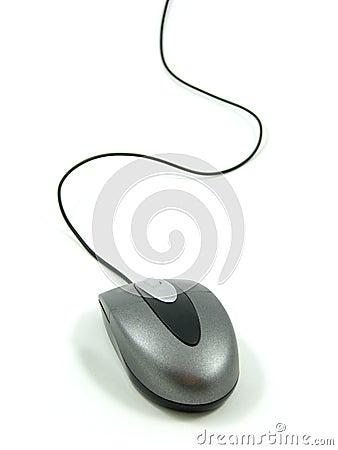 Free Wheel Mouse Royalty Free Stock Photo - 429455