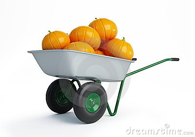 Wheelbarrow pumpkins